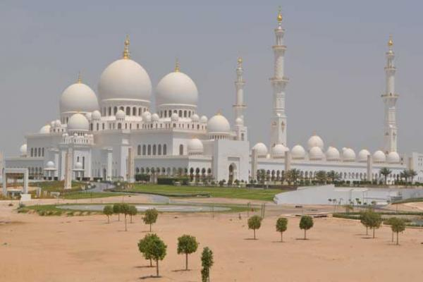 Pararoos in Abu Dhabi